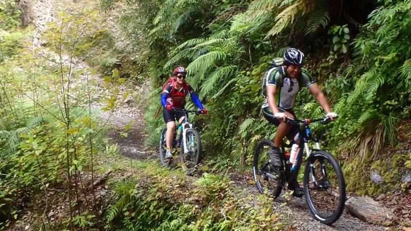 اثرات مثبت دوچرخه سواری