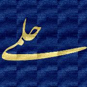سید نوید حلمی
