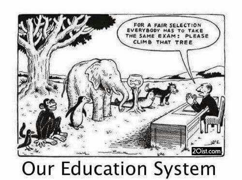 عکس شماره 2- سیستم آموزشی ما