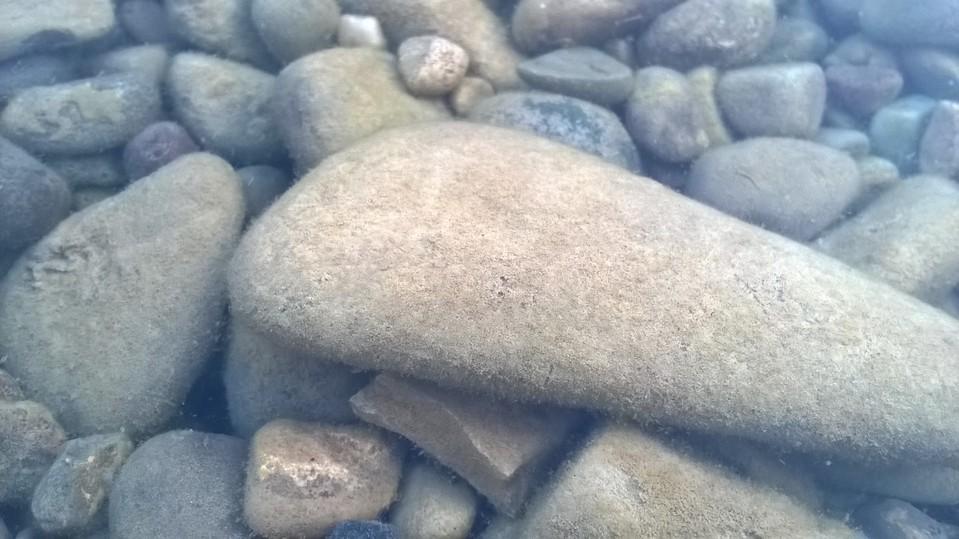 افزودن واترمارک به تصاویر در ترمینال، به سادگی آب خوردن!