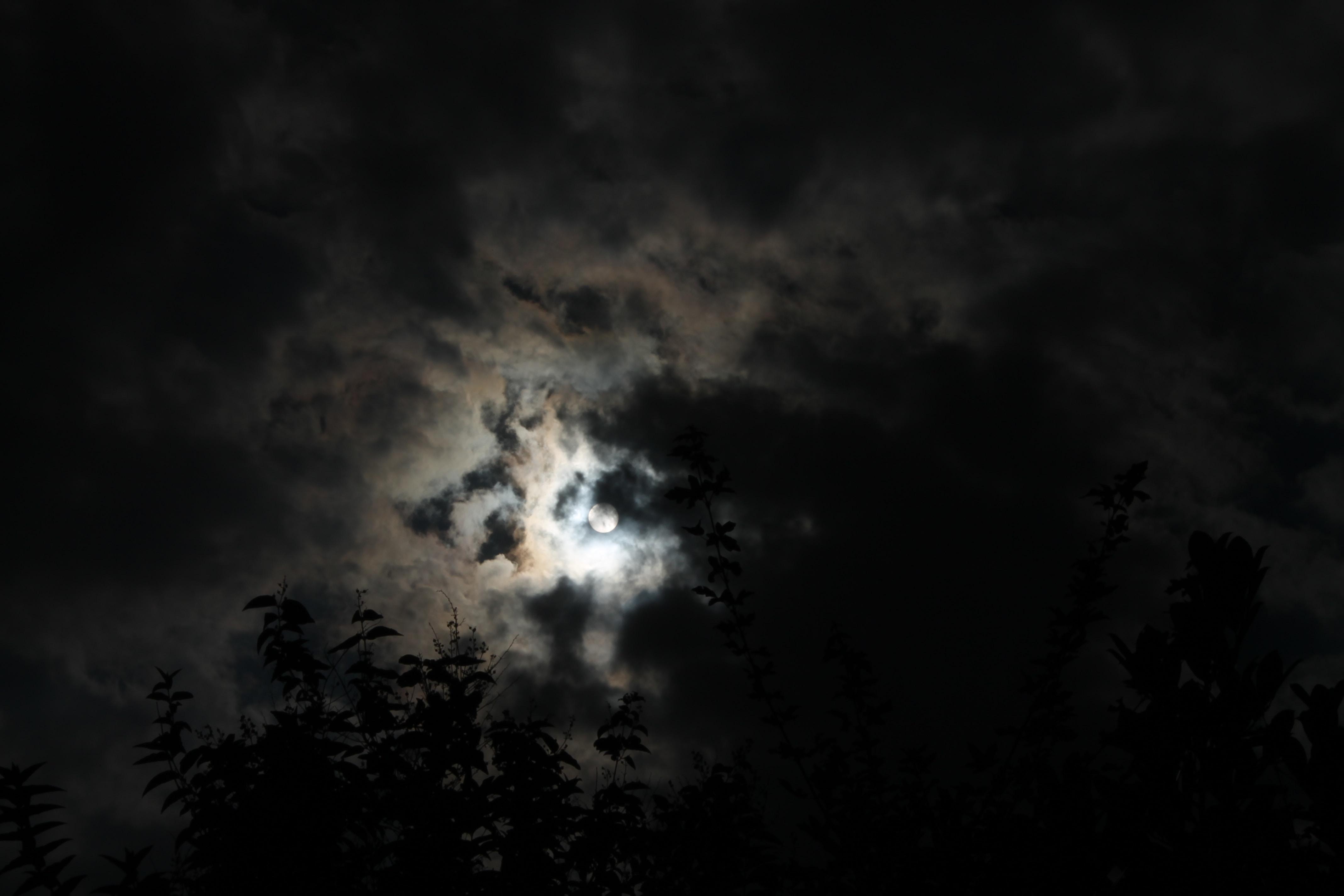 ماه برای همیشه پشت ابر نمیمونه. حقیقت و باطن آدمها و چیزها هم همینطور. نتایج اعمالمون هم یهو از پشت ابر در میان.