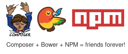 رهایی از npm ِ خر موقع آپدیت زدن تو composer