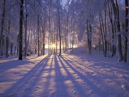 زمستان(مهدی اخوان ثالث)