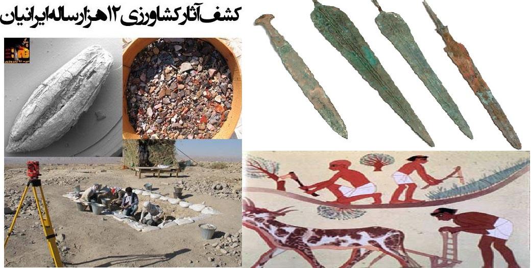گسترش شاهنامه در فرهنگ جهان؛ شاهنامه عربی (۶)