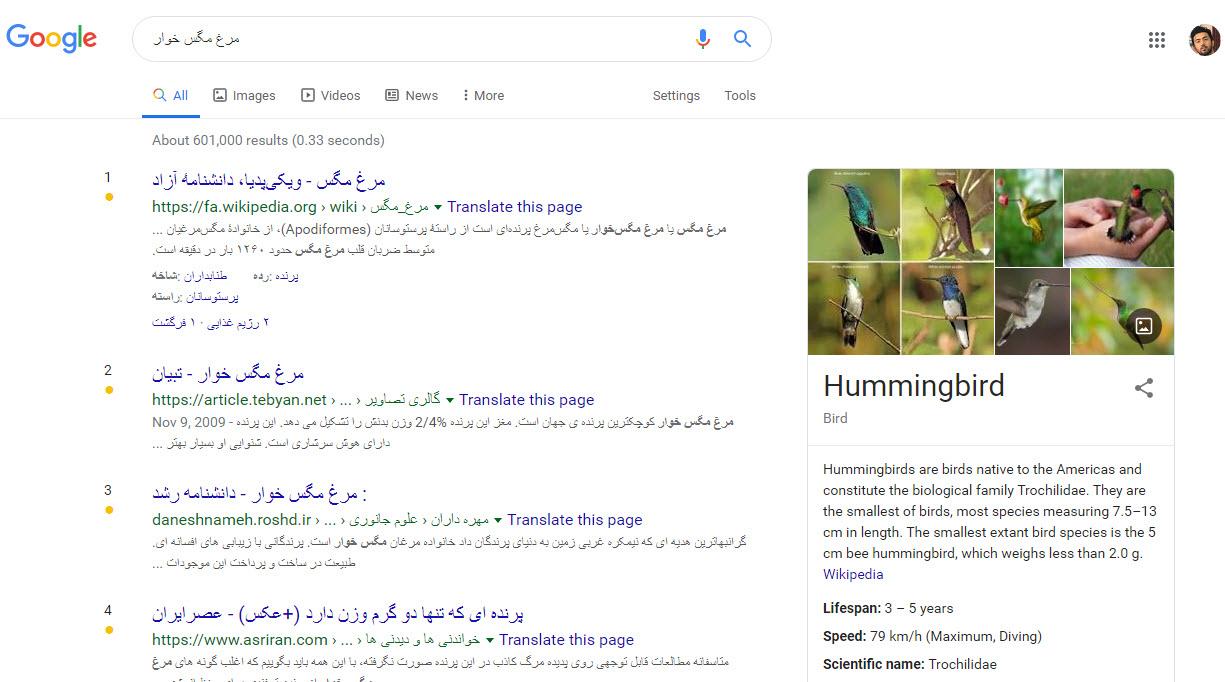 الگوریتم مرغ مگس خوار گوگل (hummingbird algorithm)