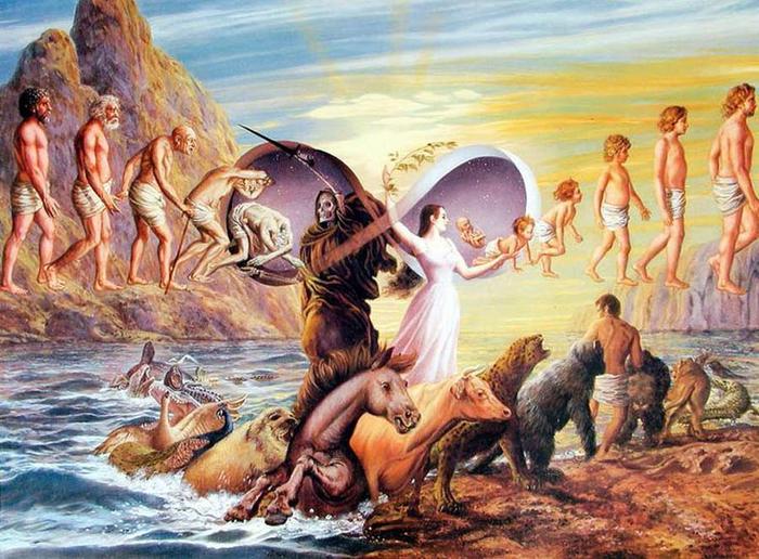 آيا «زندگی پس از مرگ» وجود دارد؟