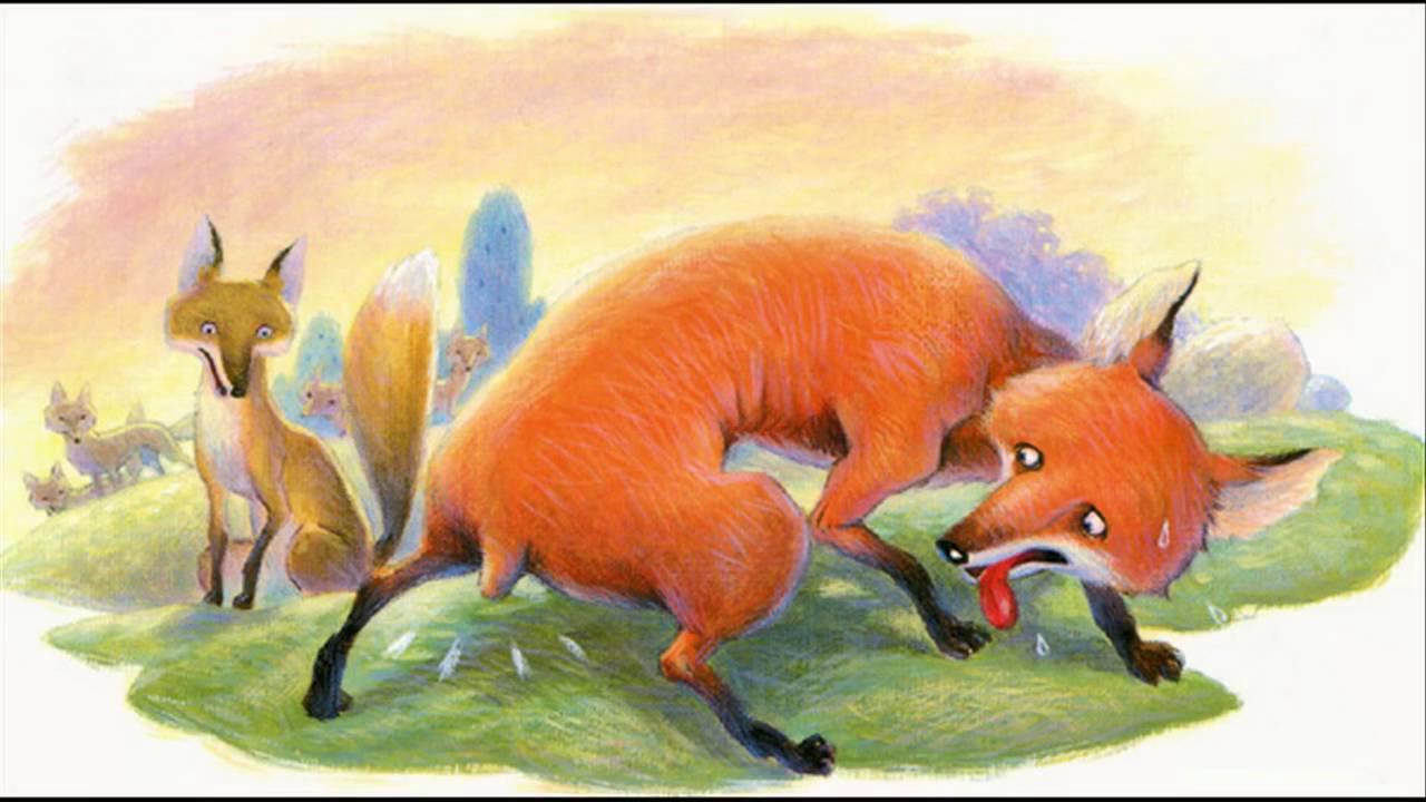 ما و آن روباهِ دُمبریده...