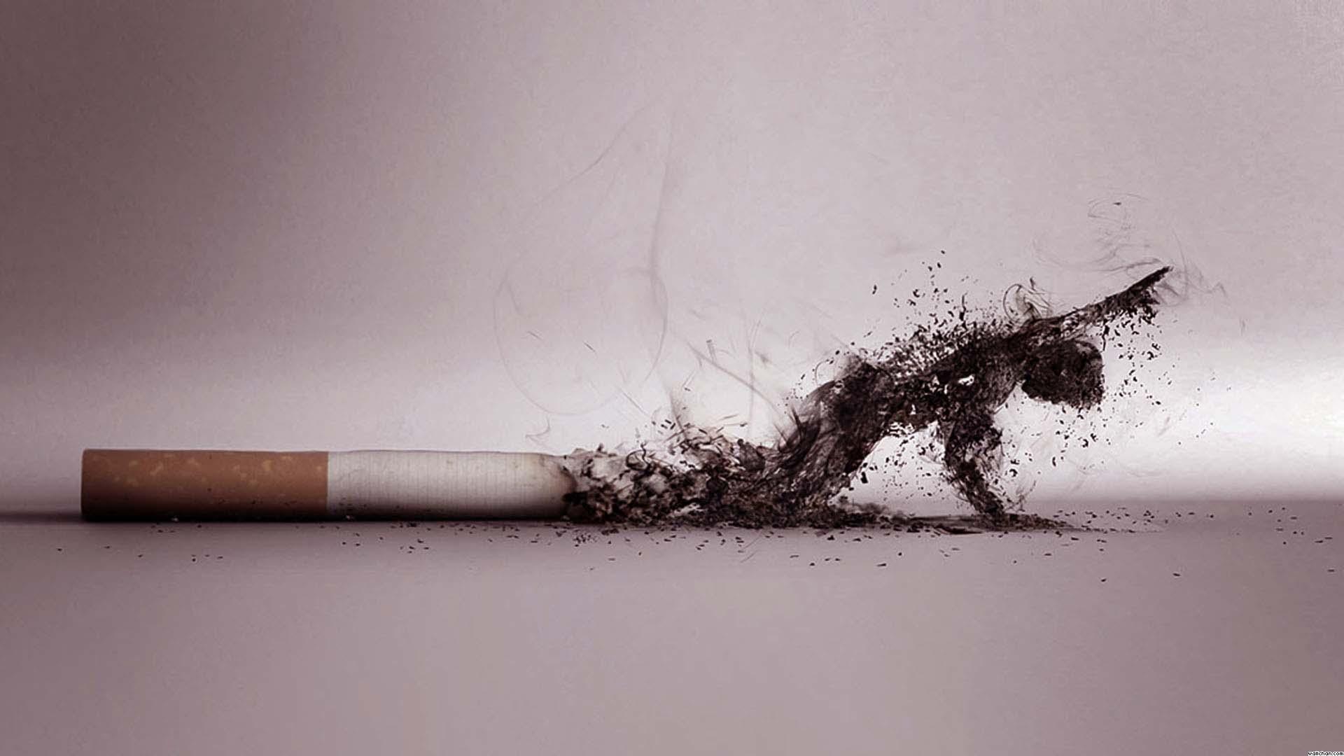 ترک سیگار را فراموش کنید!