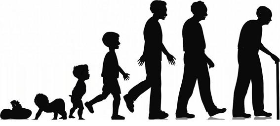 چرخههای هفتساله زندگی انسان (بخش 1 تا 3 – صفر تا بیستویکسالگی)