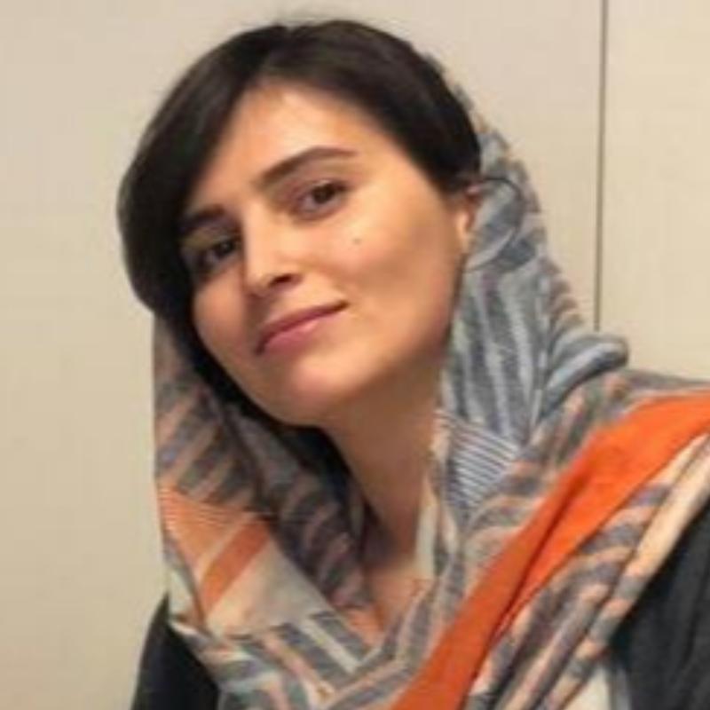 nazanin Shahsiah