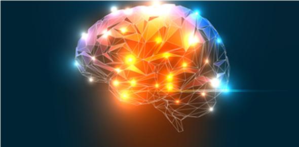 طراحی انسان محور قسمت 2 ( مغز شگفت انگیز ما )