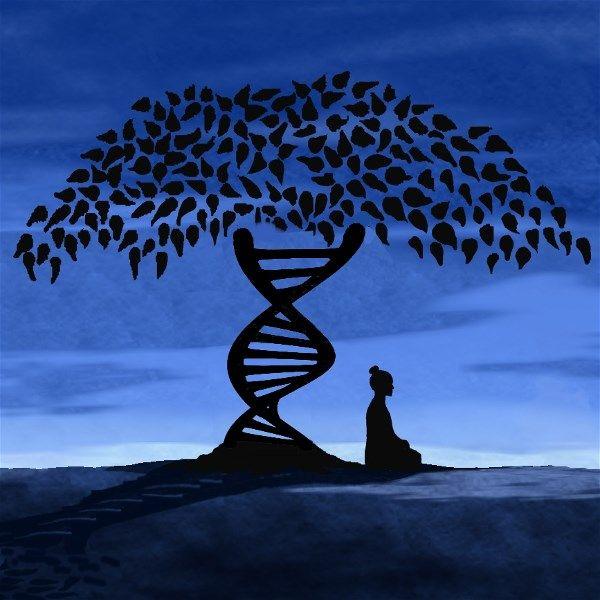 انتقال دانش در بین موجودات زنده