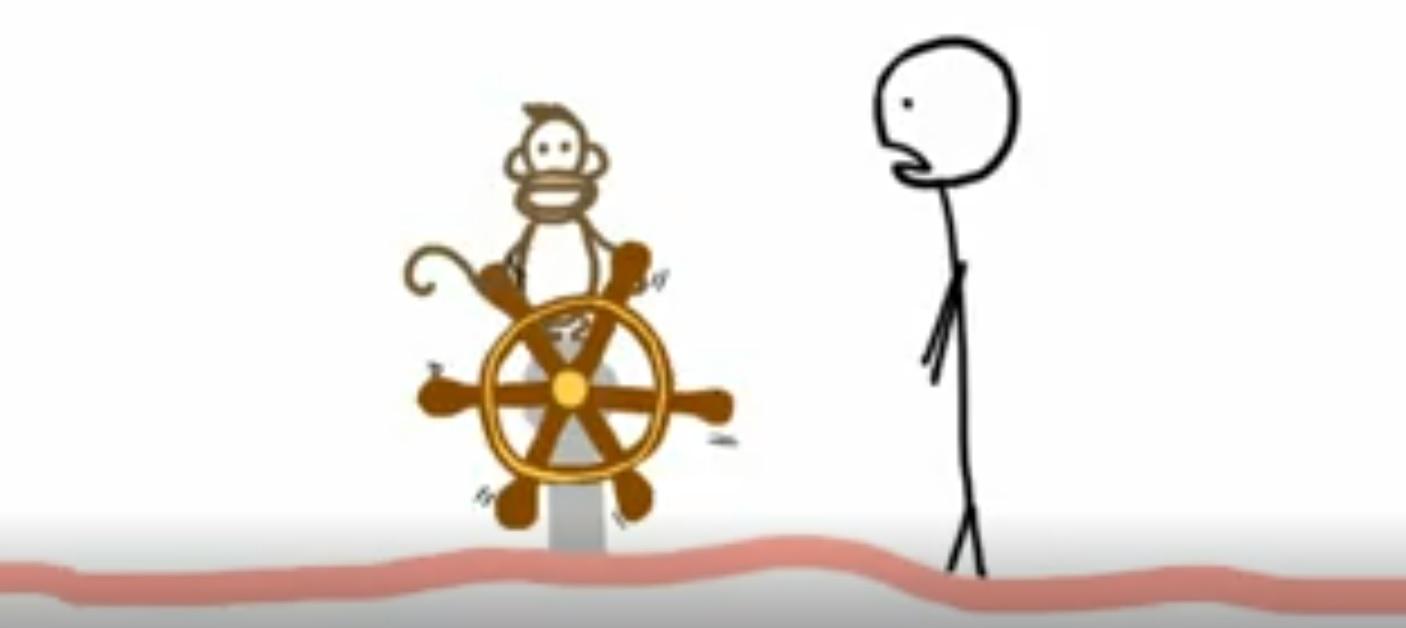 دلیل از زیر کار در رفتن انسان ها، میمون ها تشخیص داده شد (TED TALK)
