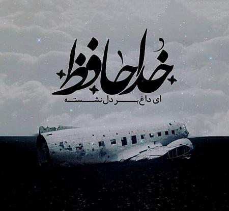 قوی سیاه نسیم طالب و نادانسته های ما از حادثه هواپیما