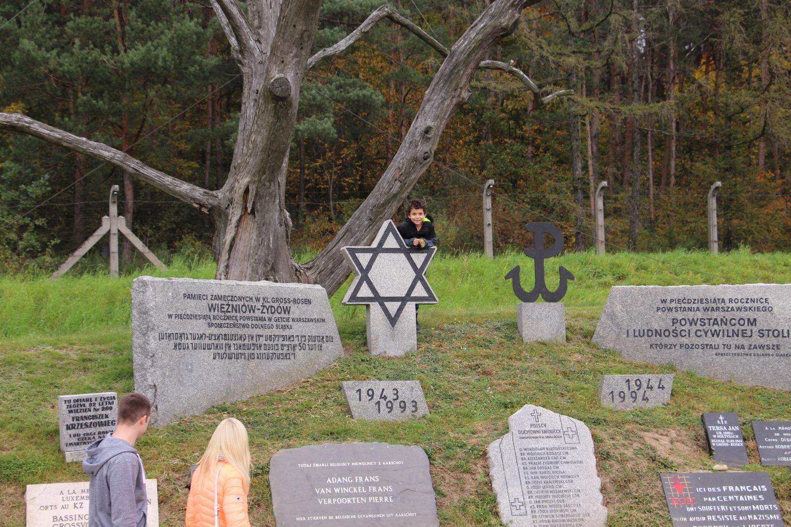 پسر بچهای که به یادمان کشتهشدگان تکیه داده است؛ گراس روزن، سیلیزیای جنوبی، لهستان
