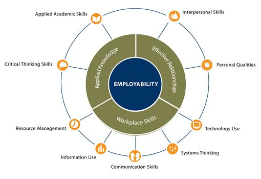 مهارتها و تواناییهای لازم برای کسب جایگاه حرفهای