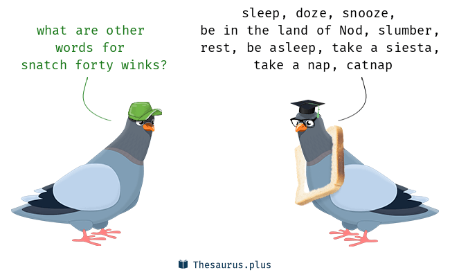 Let's talk about sleep! An important IELTS speaking topic