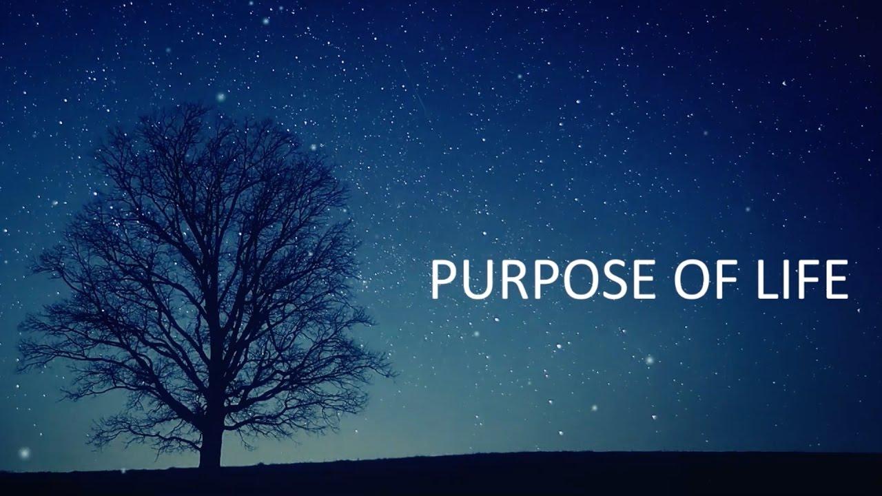 چند تمرین برای اینکه بفهمیم هدفمان در زندگی چیست
