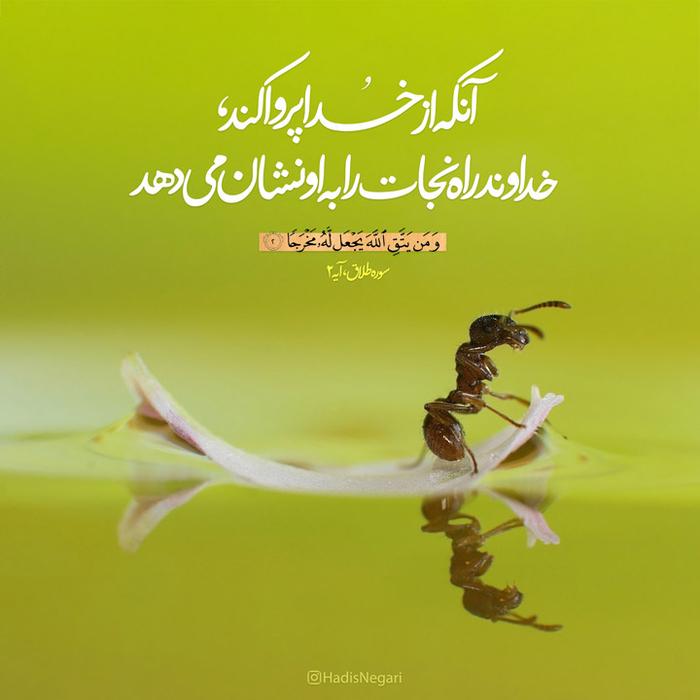 اصلاً خدا چه میخواد به ما بگه؟ خلاصهء مفهومی از هر ۱۱۴ سوره قرآن