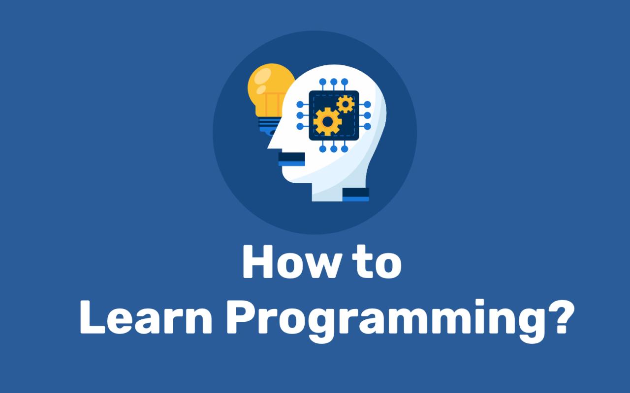 برنامه نویسی رو درست و اصولی یاد بگیر، مثل یه لاکپشت!