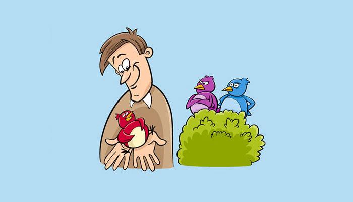 تئوری پرندهای در دست و کاربردش در تبلیغات و فروش