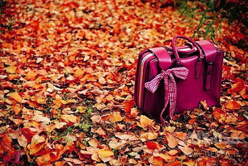 12 مهمان ناخوانده پاییز