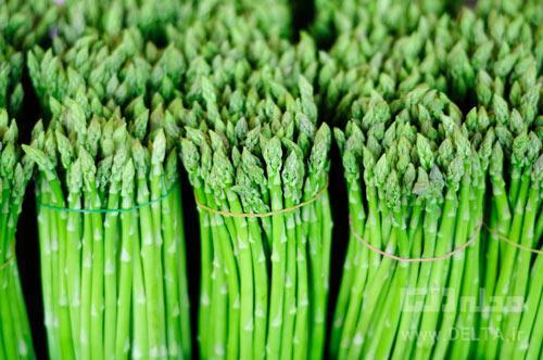 مار سبز ؛ خوردنی مفید و لاکچری