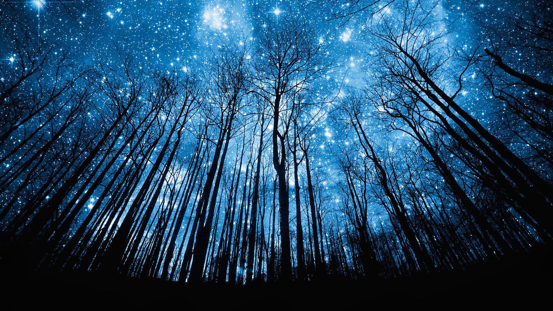 شب جایی که من بودم ...