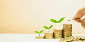 سرمایه گذاری بلند مدت