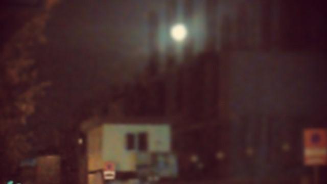 مهتاب و اسکلتهای بتونی