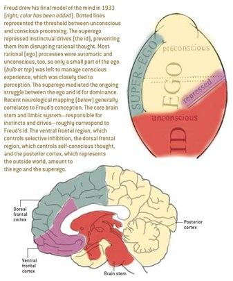 ترکیب بیمار علوم اعصاب و روانکاوی