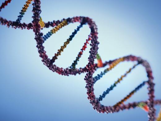 سیاست گذاری نوآوری یعنی ایجاد اکوسیستمی که در آن ژن های خوب جهش میکنند