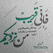 Hamidreza Bolouri