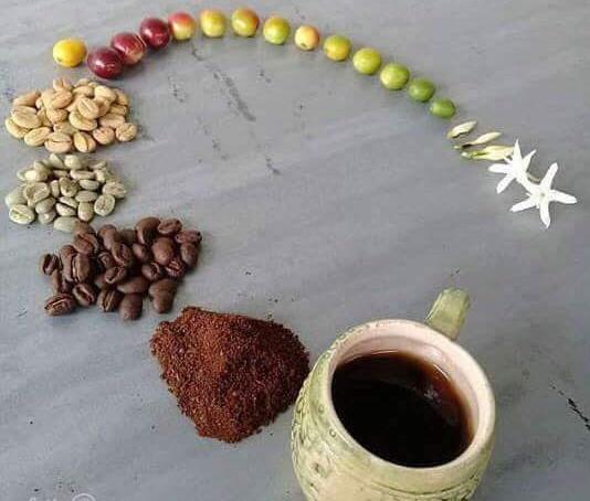 سادهترین راهنمای انتخاب قهوهساز خانگی