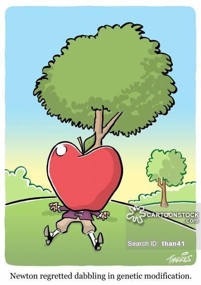 چرا ما با خوردن سیب به سرمان جاذبه را کشف نمی کنیم؟