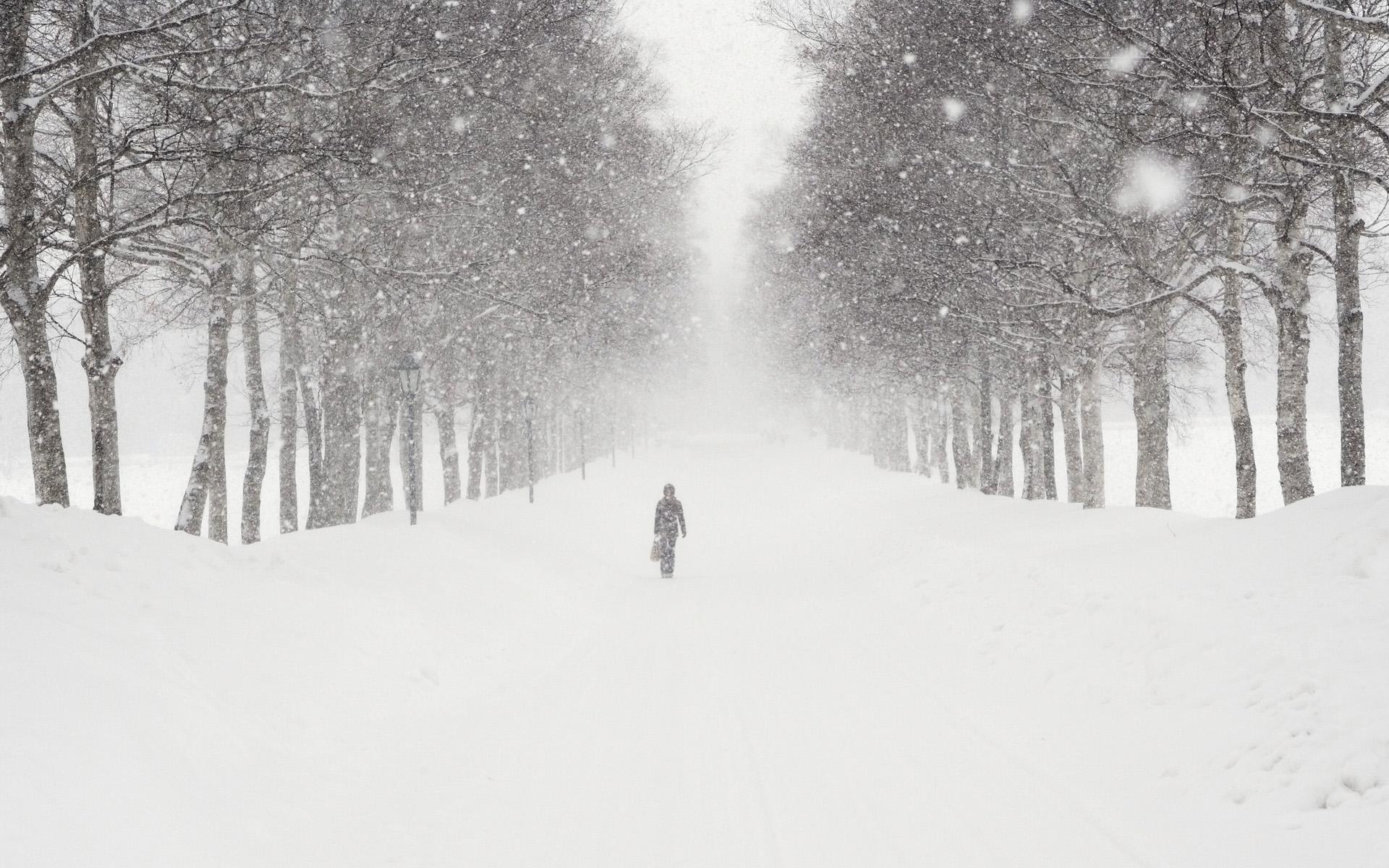 این اِلِمان های زندگین که آدم و از درون سرد و گرم می کنن...