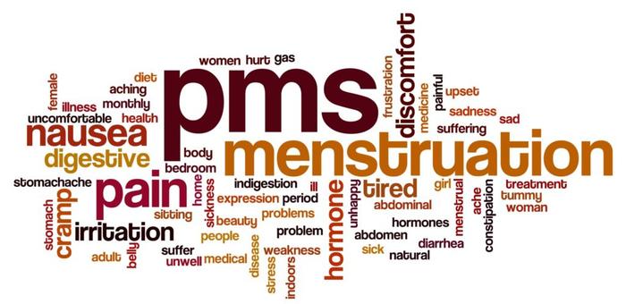 سرعتگیری به نام PMS