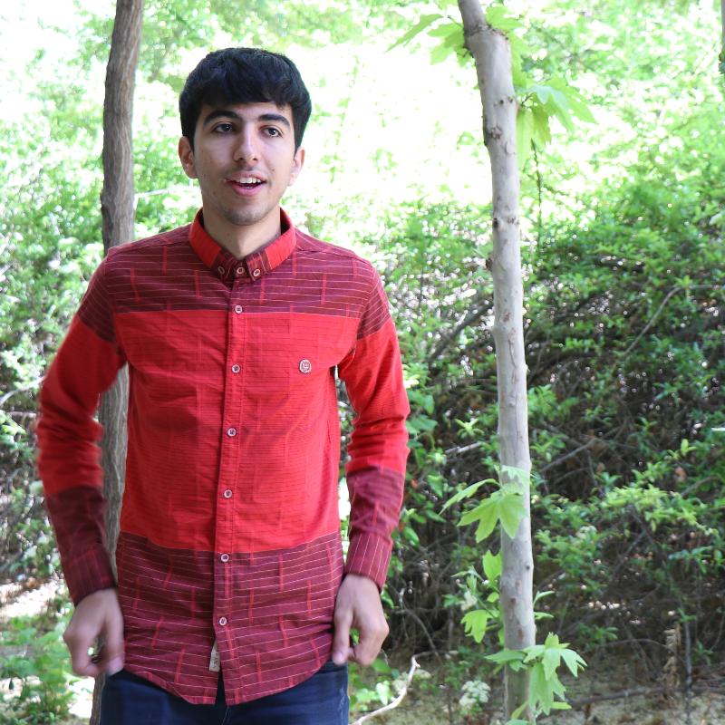 Amir Kargaran