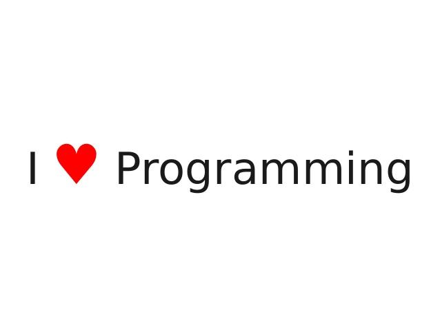 یک برنامه نویس نوجوان