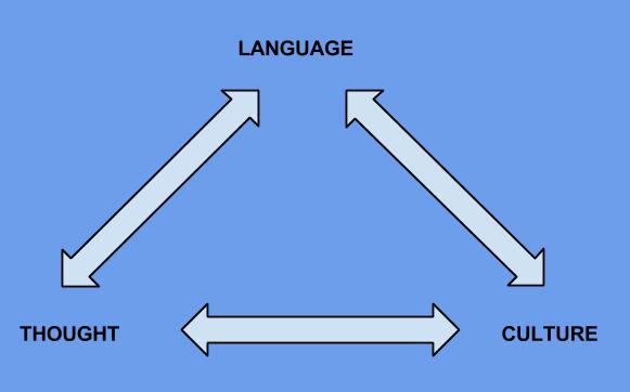 ثانیهای درون ذهن یک مترجم!