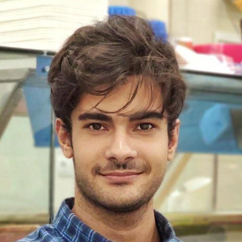 محمدمهدی معمارپوری