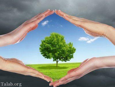 #پیک زمین#مراقب طبیعت باشیم