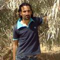 sarani habib