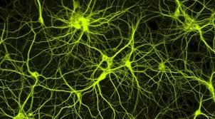 قسمت دوم اموزش ساخت شبکه عصبی در پایتون خیلی ساده وراحت