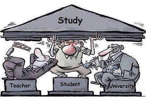 دانشگاه یا موز!