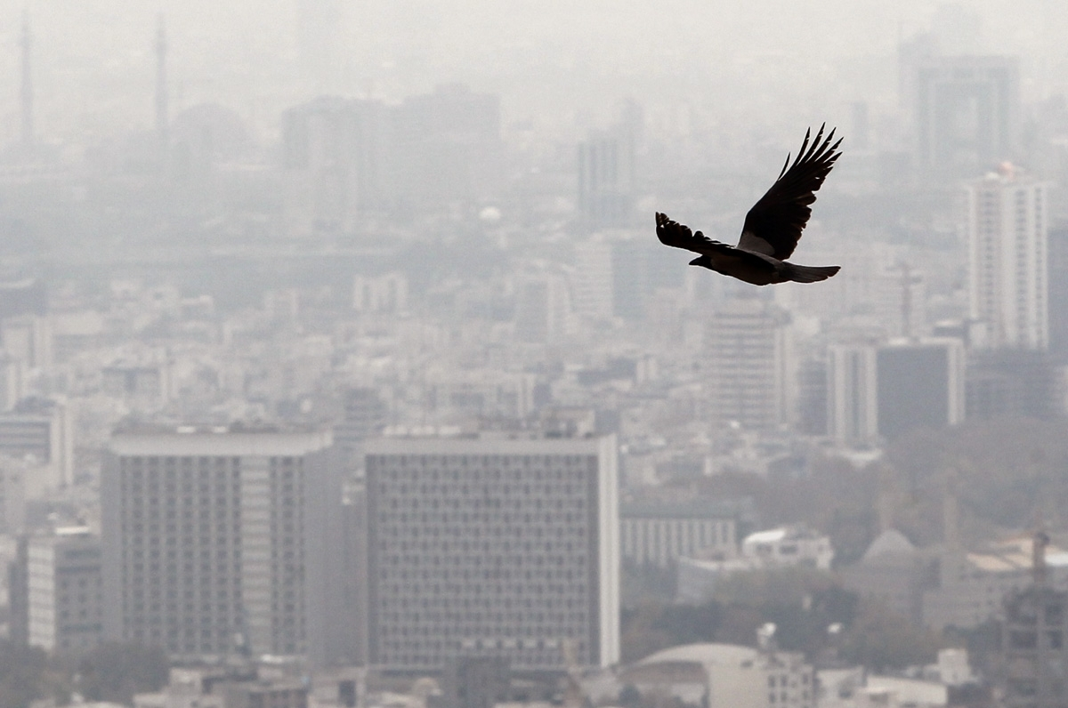 اثراتی که آلودگی هوا روی سلامت افراد میگذارد