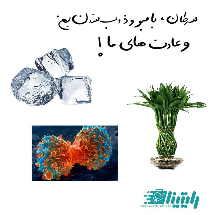 سرطان، بامبو و ذوب شدن یخ و شکل گیری عادت های ما