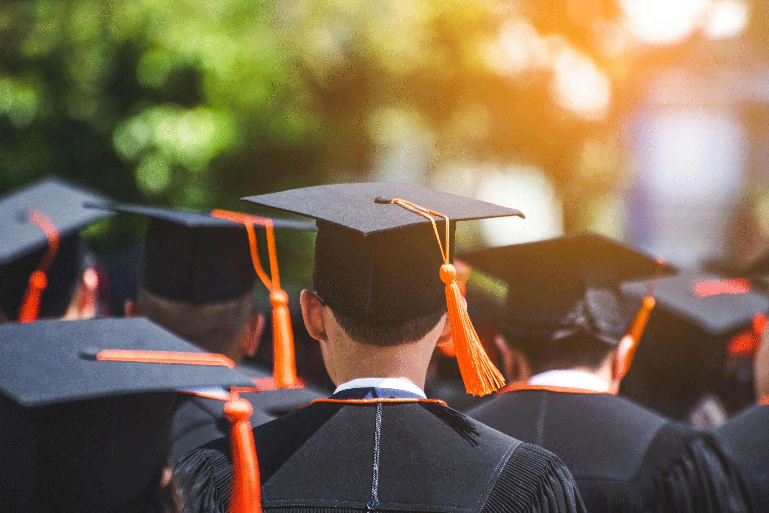 آیا برنامه نویس ها باید به دانشگاه بروند؟