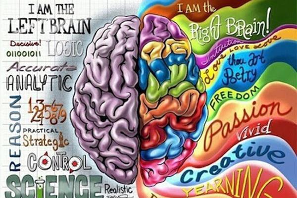 هرگز از هر دو نیمکره مغزتون استفاده نکنید!