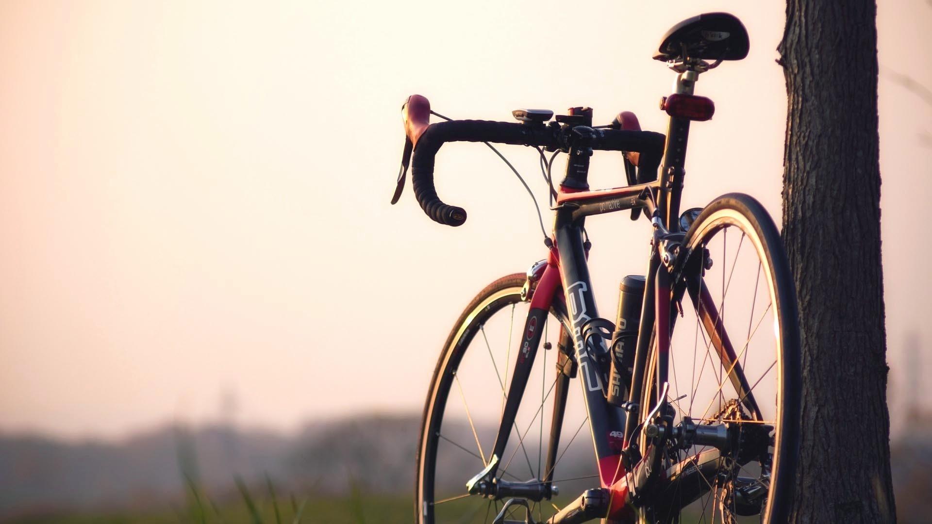 شناخت انواع دوچرخه موجود  در جهان